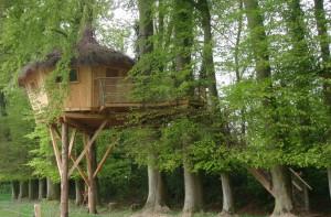 Cabane de la ferme en feuilles