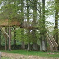 Cabane des sous bois en feuilles 1024