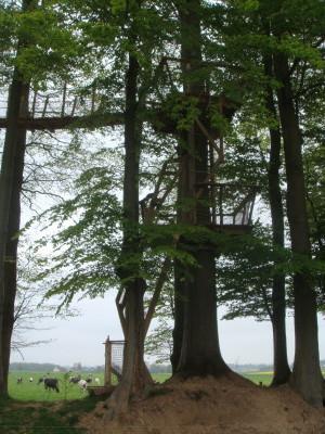 L'accès de cette cabane dans les arbres débute par une échelle inclinée qui débouche sur une plateforme intermédiaire. Il faudra grimper à une seconde échelle droite afin de pouvoir atteindre les passerelles. Un vrai parcours du combattant vous attend!