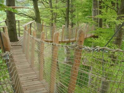 Le fameux «pont de singe» qu'il faut emprunter sur une vingtaines de mètres pour pouvoir accéder à cette cabane d'aventuriers haut perchée!