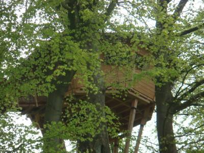 La cabane champêtre est la seule cabane dans les arbres a posséder une fenêtre panoramique. Cette ouverture permet de profiter de la vue dégagée et de pouvoir admirer le coucher du soleil vers les champs depuis l'intérieur de la cabane.