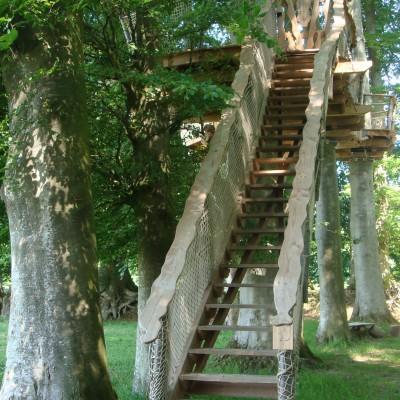 escalier droit cabane des sous bois ensoleillé