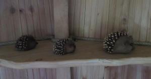 Décoration dans cabane des sous-bois