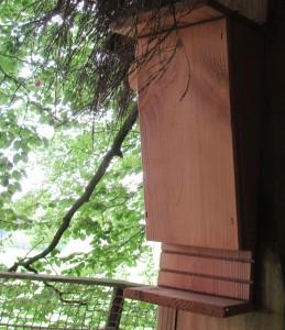 Nichoir chauve-souris sur la terrasse de la cabane des sorcières